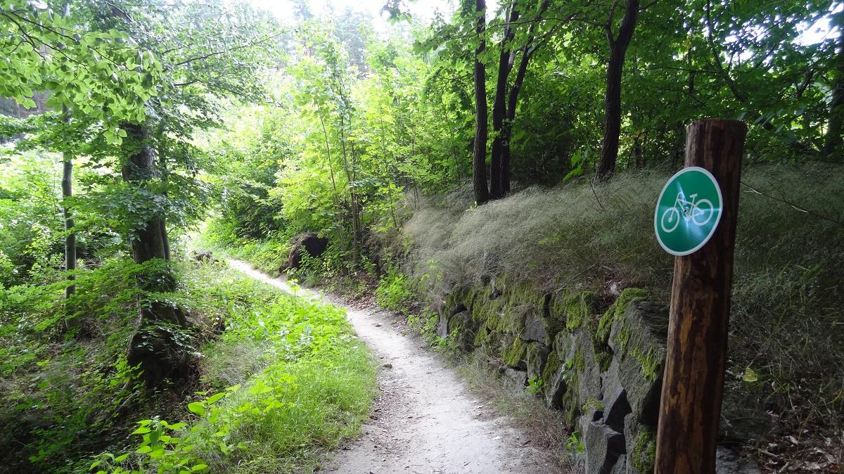 Rychlebské stezky - trail Dr. Weissnera